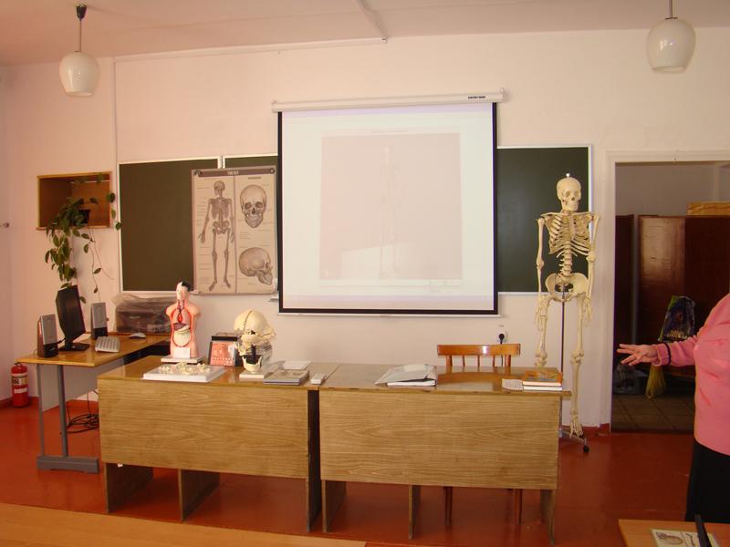 Пособия в кабинет биологии